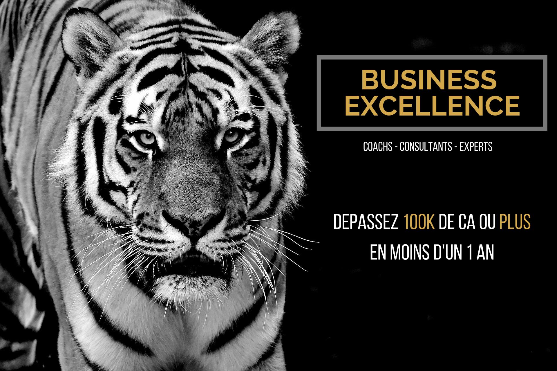 Dépasser 100k de chiffre d'affaires grâce au programme business excellence pour coachs, consultants ou experts